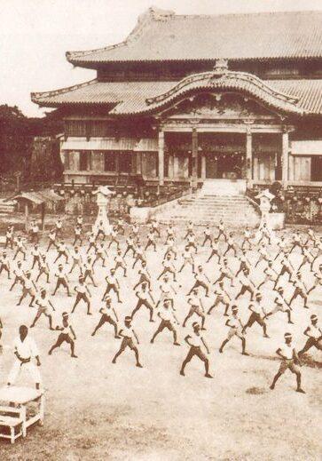 karate, Piaseczyński klub karate, Shorin-Ryu, treningi, obozy sportowe